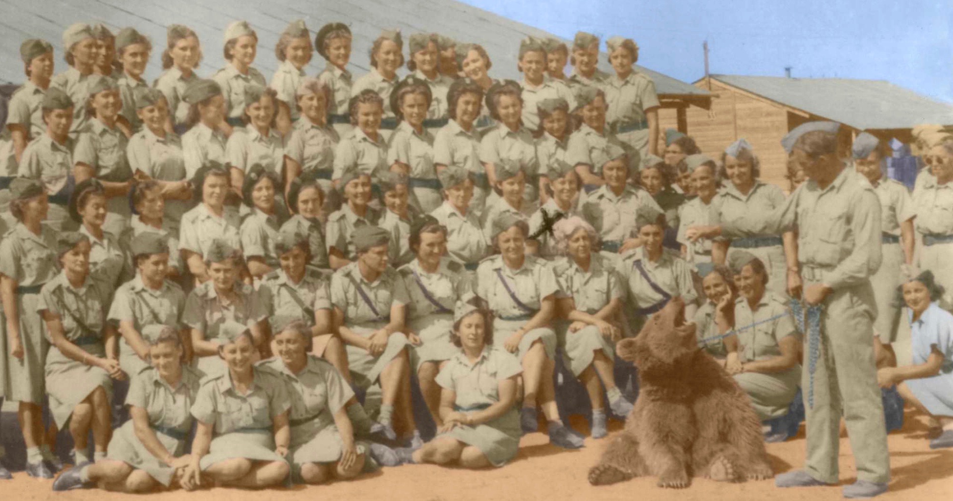 Wojtek – The Bear That Fought The Nazis